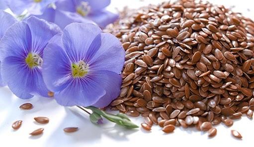 Aggiungi i semi di lino alla tua colazione!